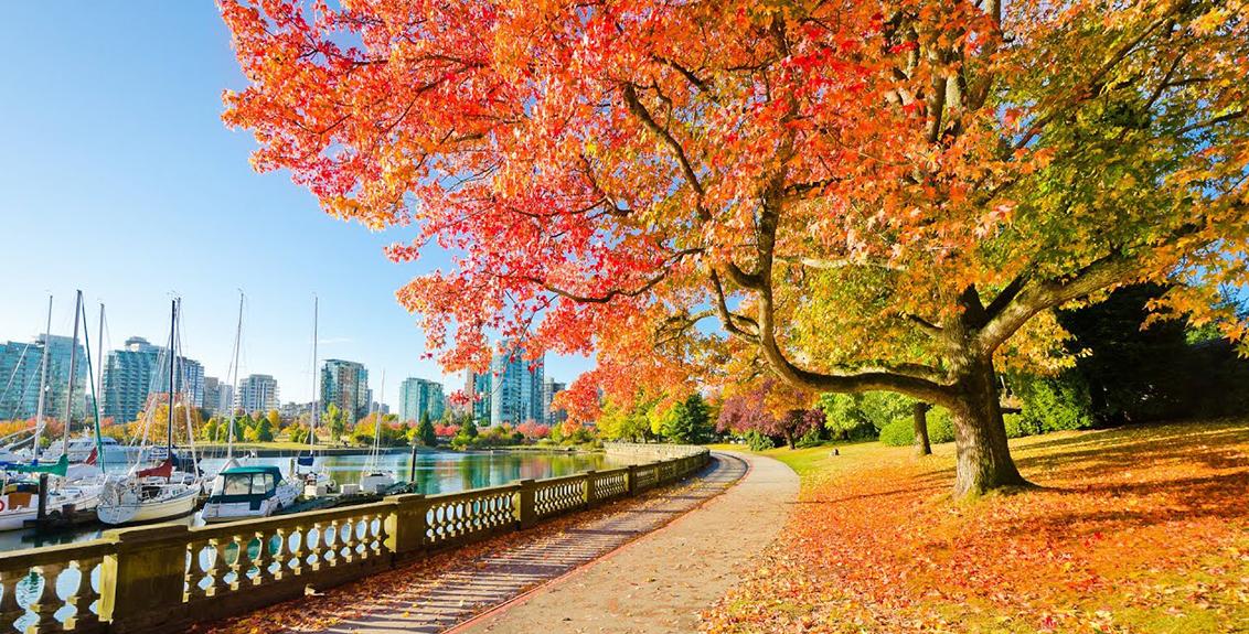 Công viên Stanley – Vancouver