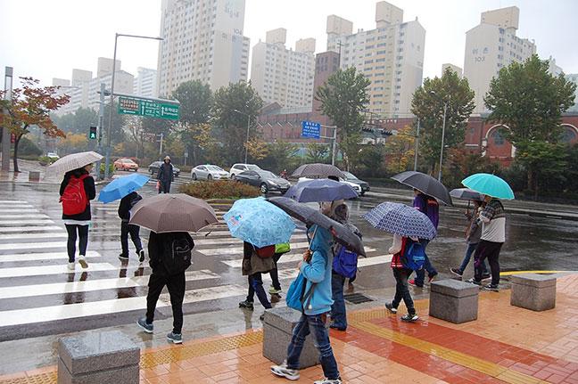 một cơn mưa lớn tại thủ đô seoul