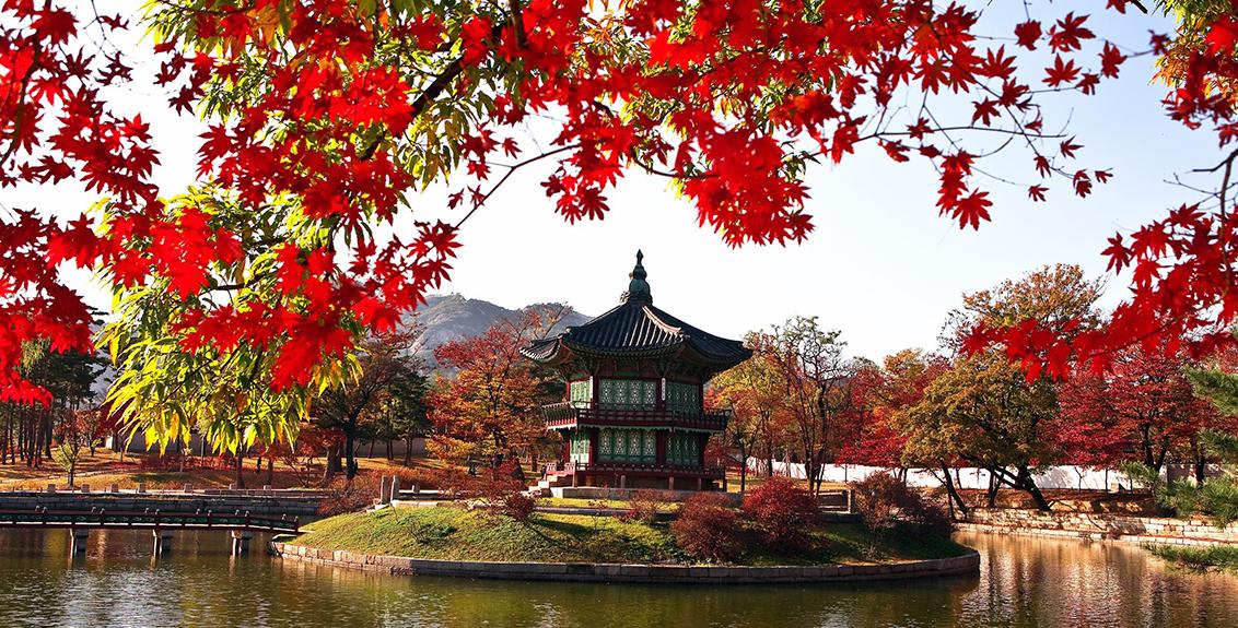 Du lịch Hàn Quốc mùa nào đẹp nhất?