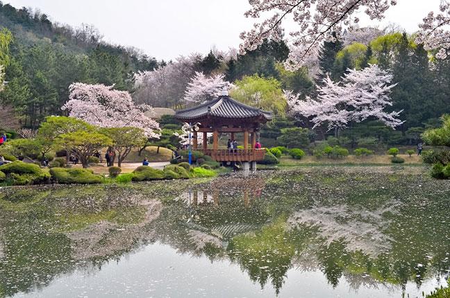 gyeongju hàn quốc