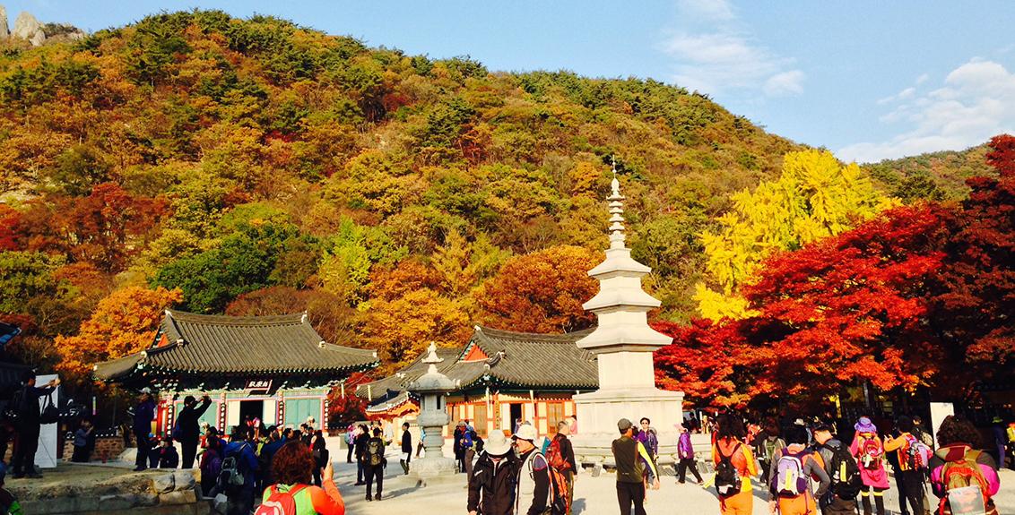 Tổng hợp các tour du lịch Hàn Quốc