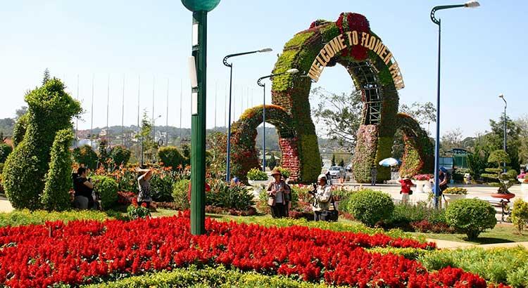 Khám phá vườn hoa thành phố Đà Lạt