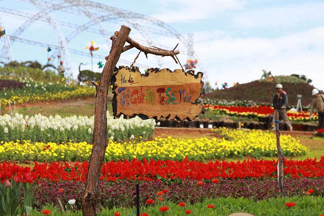 thế giới sắc màu tại vườn hoa đà lạt