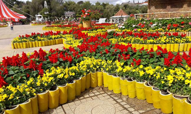 sắc xuân tại vườn hoa đà lạt