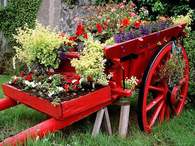 chiếc xe ngựa phủ đầy hoa tại vườn hoa thành phố