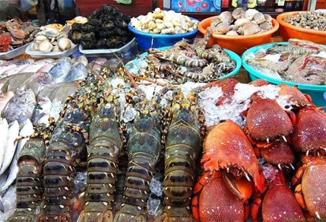 hải sản tươi sống tại bãi khem