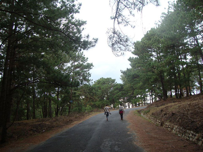đi bộ theo đường nhựa lên núi langbiang