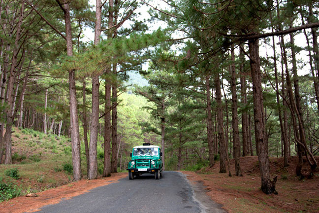 xe jeep đang trên đường đưa du khách lên núi langbiang