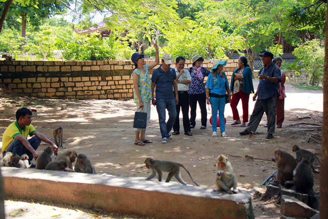 chùa khỉ vũng tàu