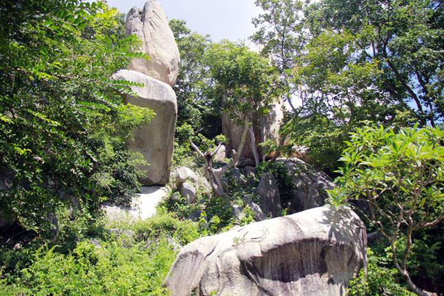 Tảng đá hình đầu rắn nặng hơn chục tấn