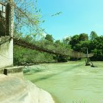 Ảnh rừng thác Mai Đồng Nai